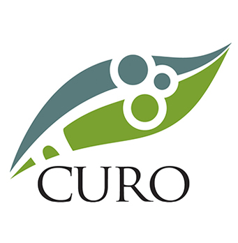 Curo Property
